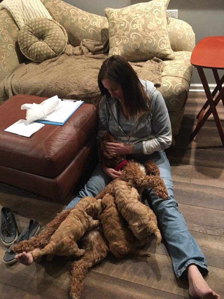 Trish, Sailor and her 3 pups!